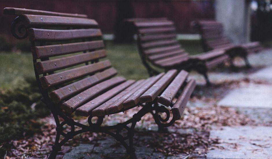 La soledad del acompa?ante